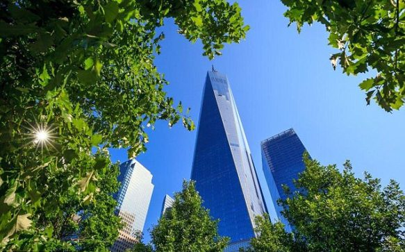 ROUGH TRADE AT WTC